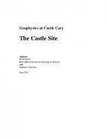 CastleCaryReport