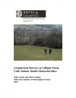 Lilliput Farm geophysical surveys